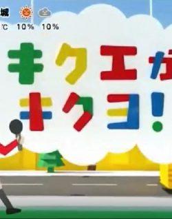 フジテレビ「めざましどようび」にてinti4が紹介されました